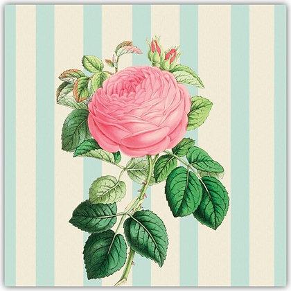 DT18024 Pink Rose