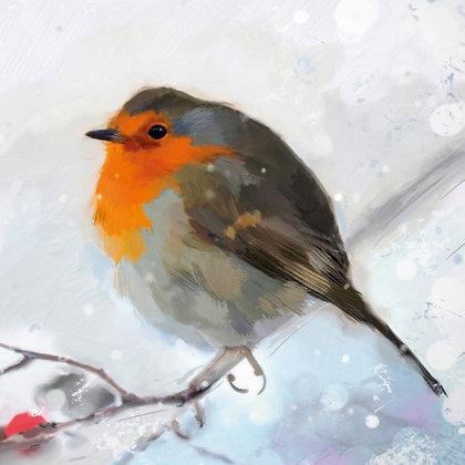 18082 Winter Robin