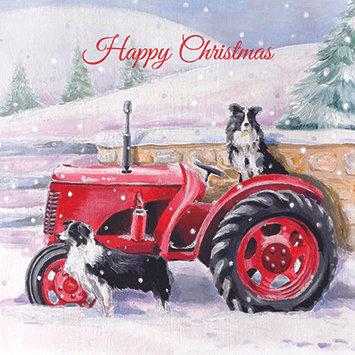 T17107 Collies Christmas - Cost per pack isjust £1.50 (inc vat) rrp £3.00