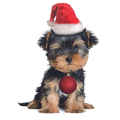 16083 Festive Puppy