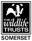 Somerset Wildlife Trust.png
