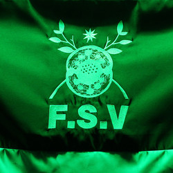 F.S.V