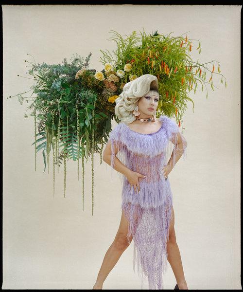 Eivind-Hansen-Flower-Portrait-Forget-Me-