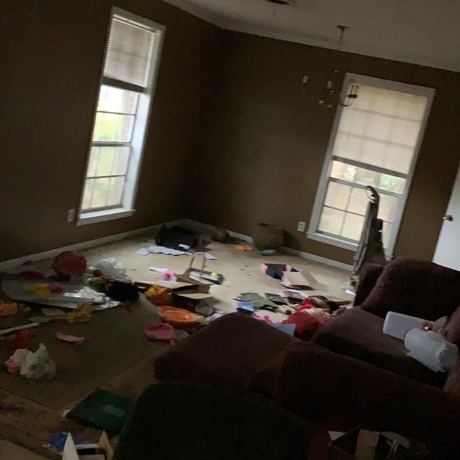 Flip Propery - Before Living Room