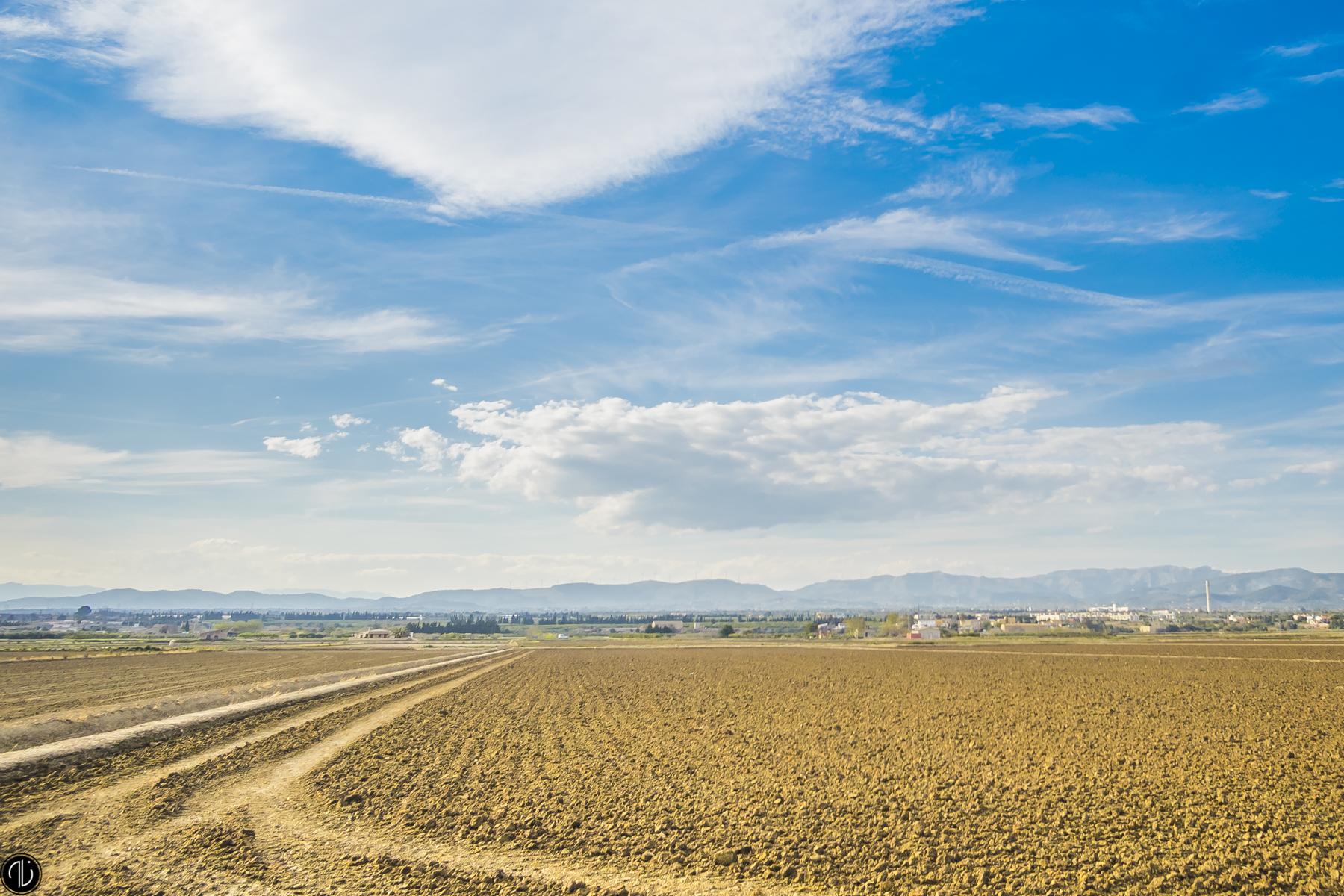 Delta Del Ebro, España