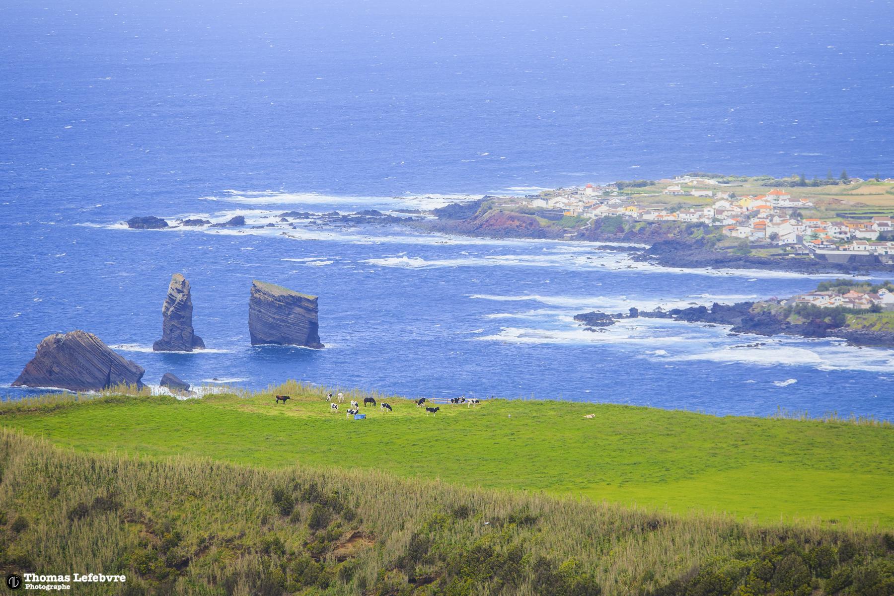 Sao Miguel, Azores. PT
