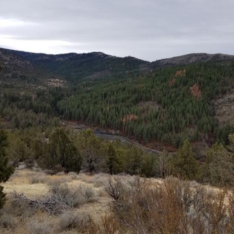 View, no Lake