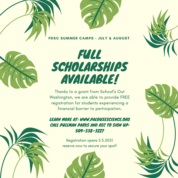 _Summer Camp Scholarships.png