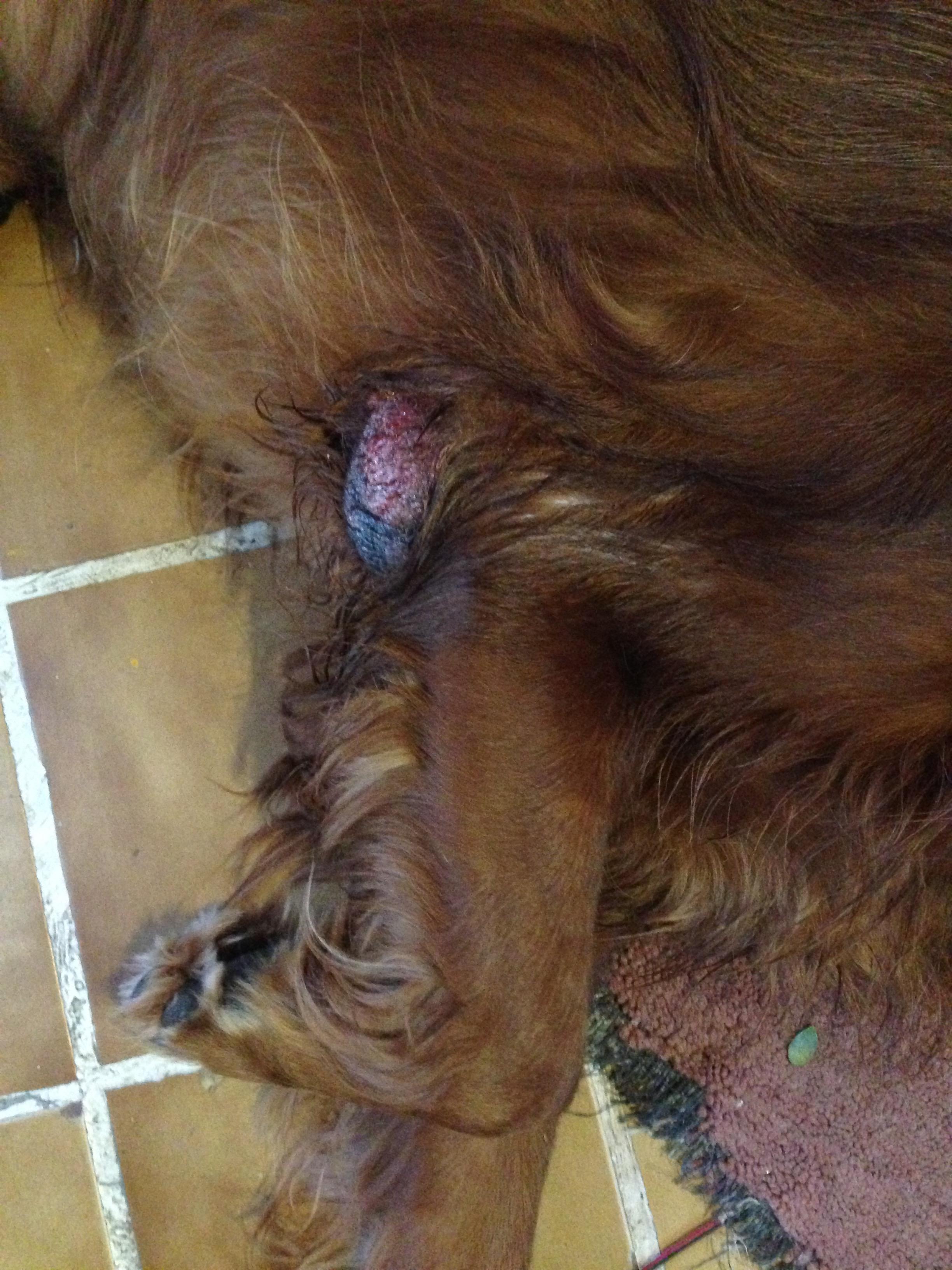 Nuevo tumor en el Codo