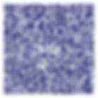 Unitag_QRCode_1574679435814.png