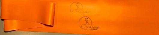 Orange Bands.jpg