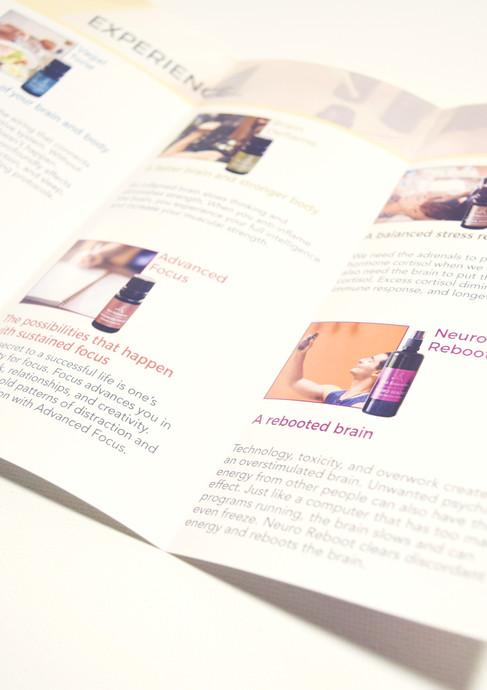Meo Energetics Brochure