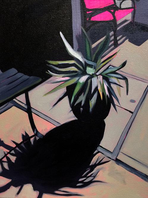 'Sidewalk Plant'