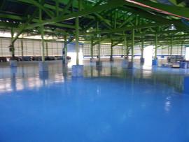 โรงงาน wellgrow