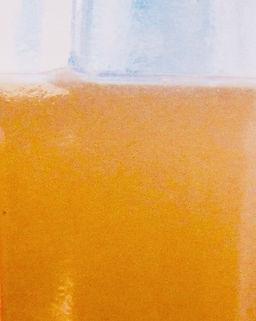 Shimmer Chef Apple Cider.jpg