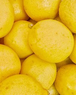 Shimmer Chef Lemons.jpg