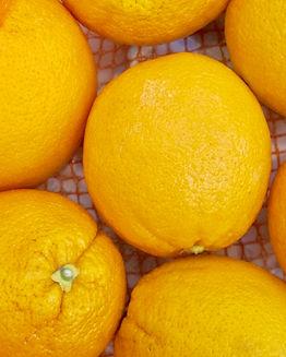 Shimmer Chef Orange.jpg