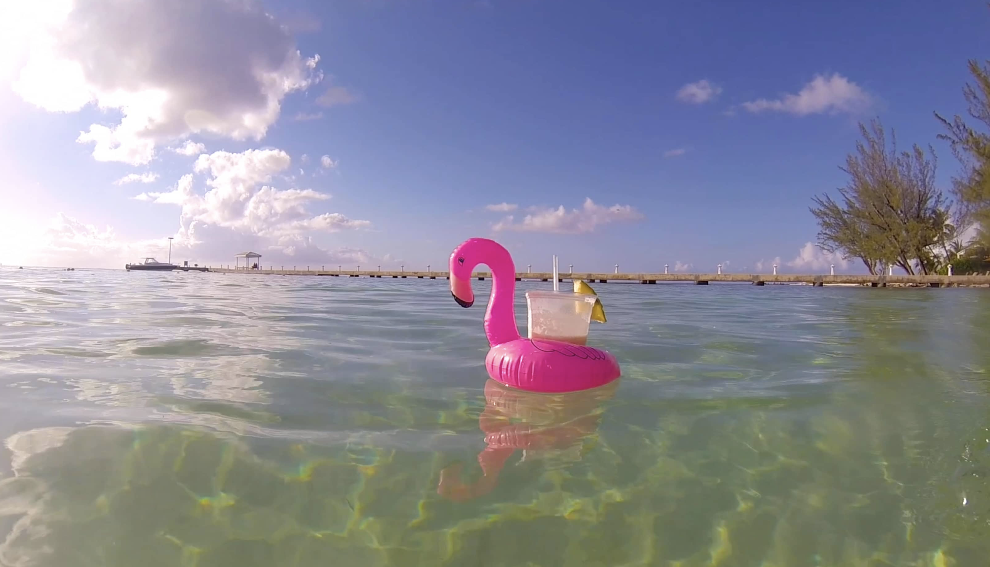 #SharpBeat 161: Pink Flamingo