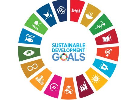 Sustainable Development Goals - A Global Outlook