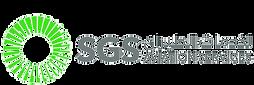 SGS Logo 1.png