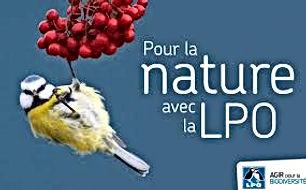 LPO.jfif