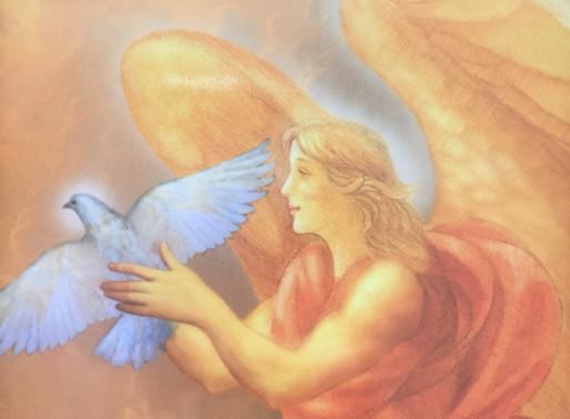 Angelų prognozė savaitei: rugpjūčio 31 – rugsėjo 6 d.