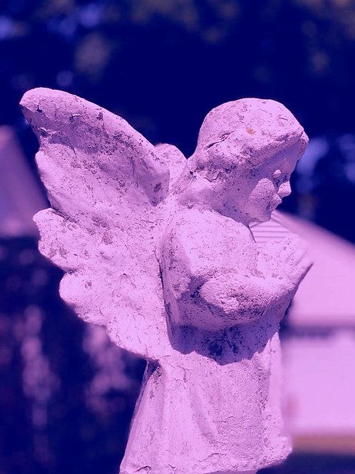 """Virtualiai vedamas kursas """"Bičiulystė su angelais"""". I dalis"""