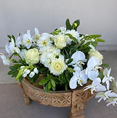 FDS - Orchid.jpg