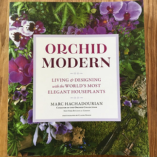 Book - Modern Orchid