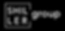 Shiller Group logo white font.png