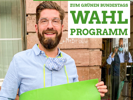 Mein Fazit zum Grünen BTW-Programm