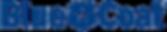blue-coat-logo.png
