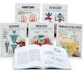 coloring books.jpg