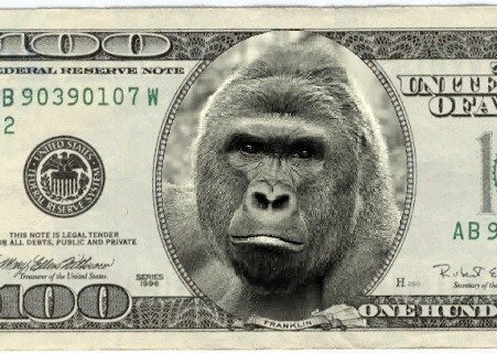 #Step 2: Associated $$$ of The Invisible Gorilla in your SOC