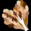 HEART Logo-03.png