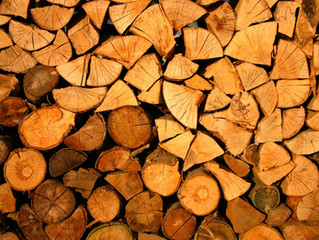 All The Best Places to Find Free Fire Wood