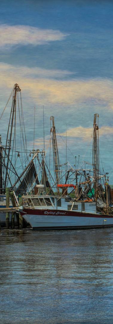 Mayport Boats Texture 6812.jpg
