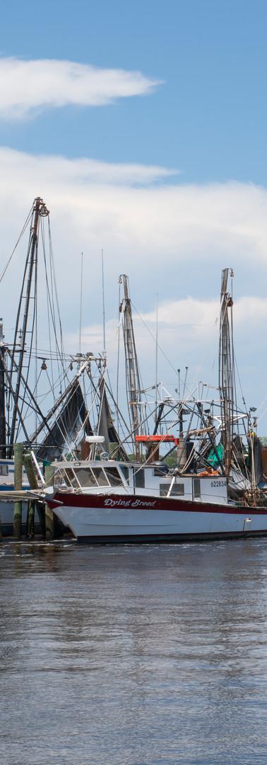 Mayport Boats 6812.jpg