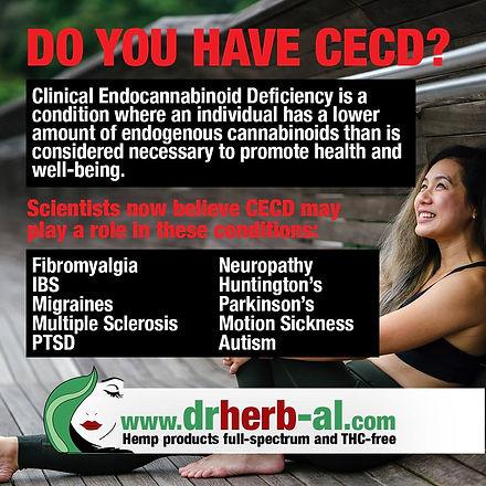 Info-Social CECD