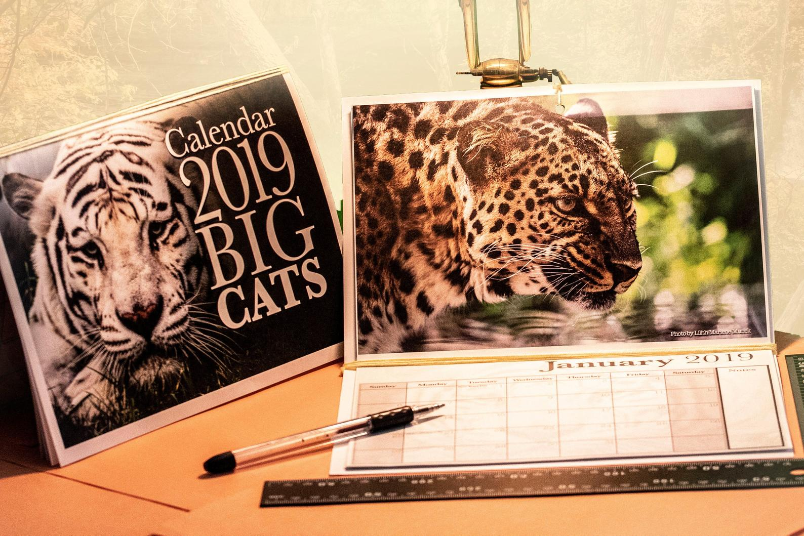 Product Photography & Calendars