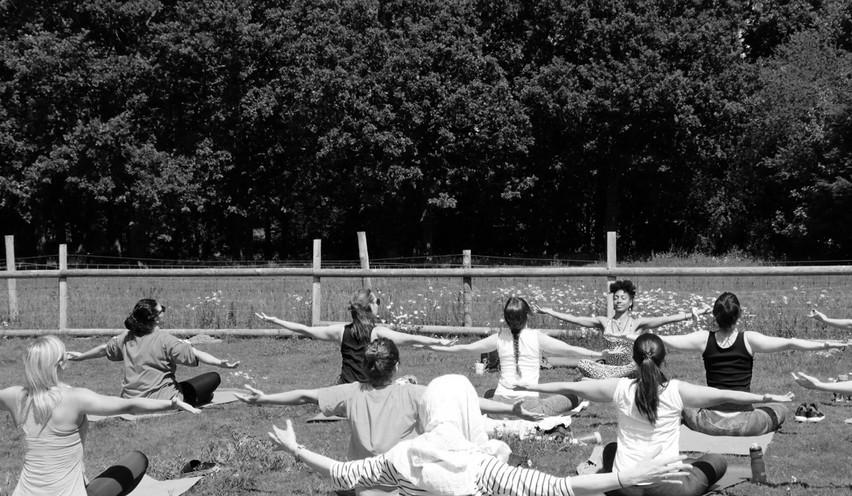 Gather Experience - Yoga