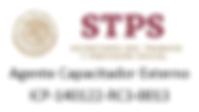 STPS ICP.png