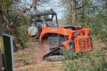 Forestry Mulchig Austin Texas