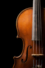 violin-web.jpg