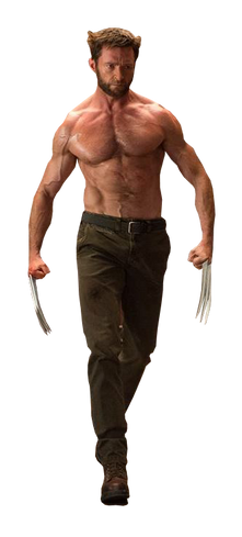 Wolverine / Росомаха