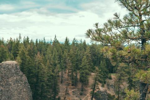 Spokane-6.jpg
