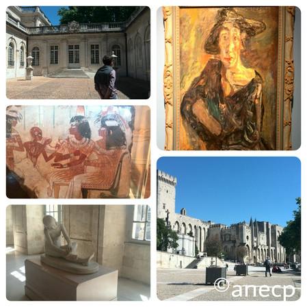 Formation : la semaine des musées à Avignon LUNDI