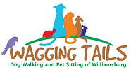Wagging tails dog walker.PNG