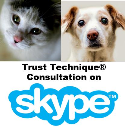 Trust Technique Consultation on Skype