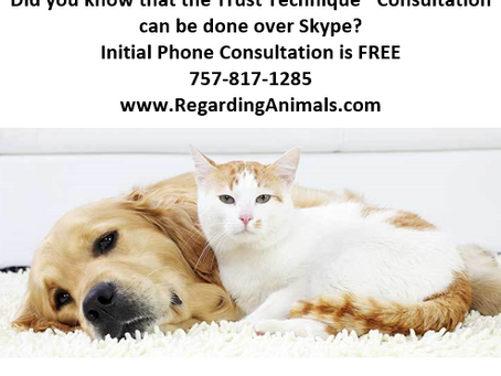 Did you know the Trust Technique® Consultation can be done over Skype?